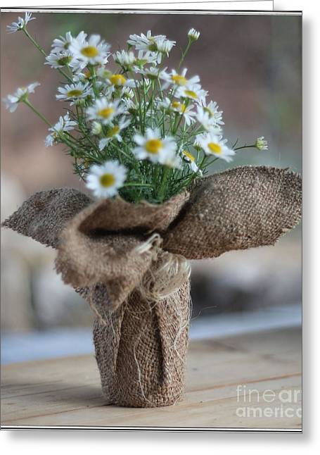 Bouquet Of Chamomile  Greeting Card by Petko Pemaro