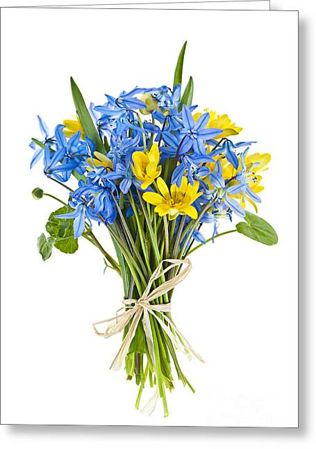 Bouquet Of Fresh Spring Flowers Greeting Card by Elena Elisseeva