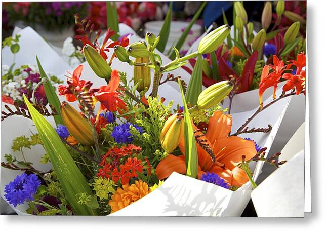Bouquets Of Color Greeting Card by Terry Horstman