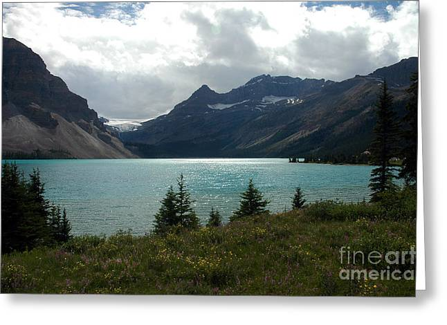 1021a Bow Lake Alberta Greeting Card