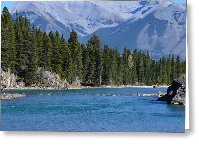 Bow River  Greeting Card by Cheryl Miller