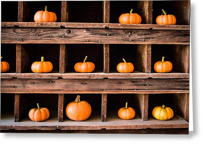 Boxed In Pumpkins Greeting Card