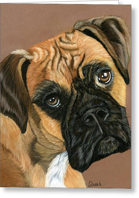 Boxer Dog Greeting Card by Sarah Dowson