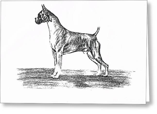 Boxer Greeting Card by Joann Renner