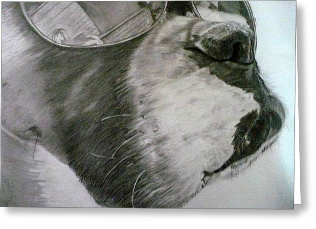 Boxer  Greeting Card by Kelly Brown