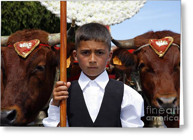 Boy And Oxen Greeting Card by Gaspar Avila