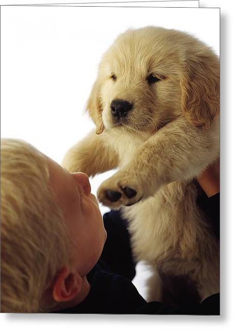 Boy Holding Puppy Up Greeting Card