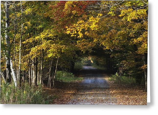 Bradford County Fall 2013 Greeting Card