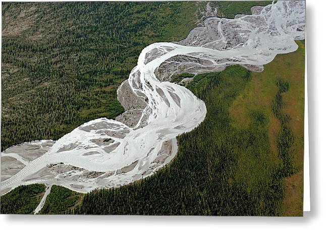 Braided River Greeting Card by Dr Juerg Alean/science Photo Library