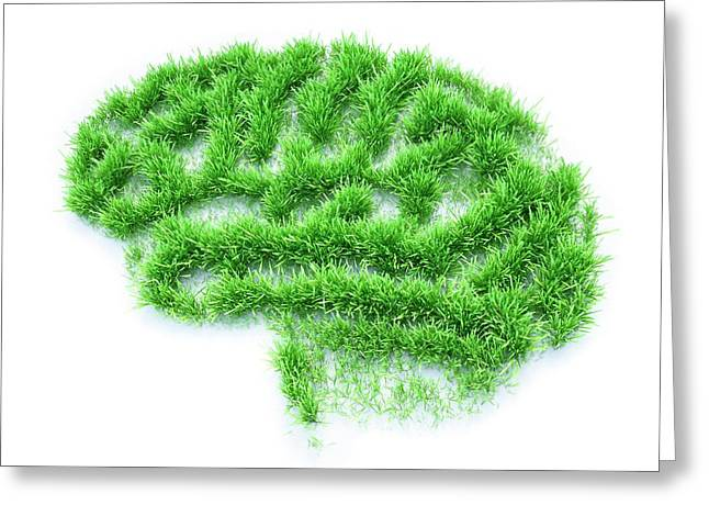 Brain Made From Grass Greeting Card