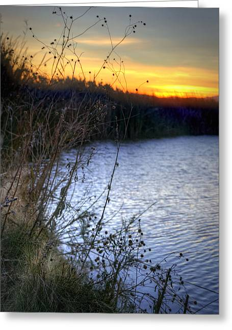Bramble Pond Greeting Card