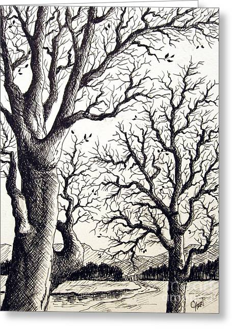 Greeting Card featuring the drawing Branches by Carol Hart