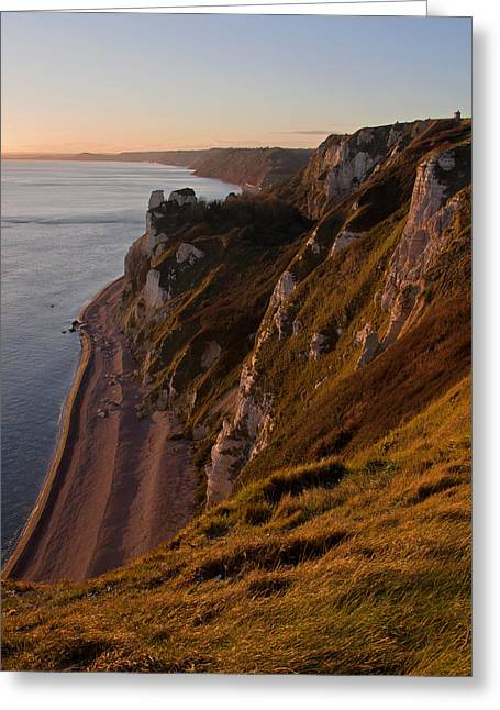 Branscombe Cliffs In Devon Greeting Card