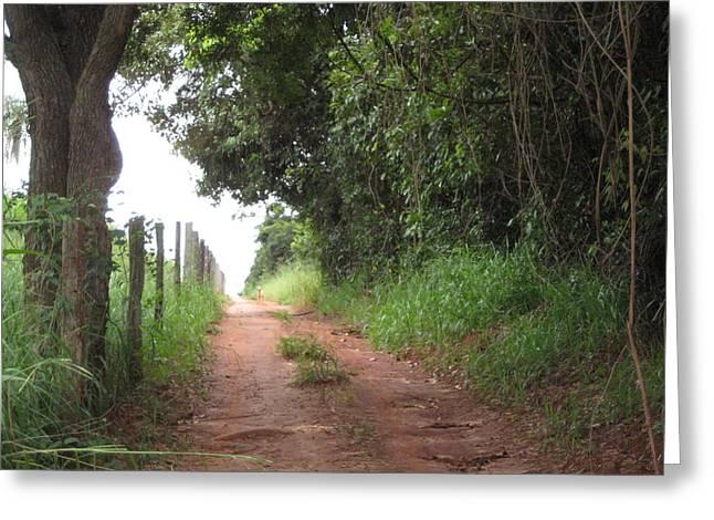 Brasil Rural 4 Greeting Card by Maria Akemi  Otuyama