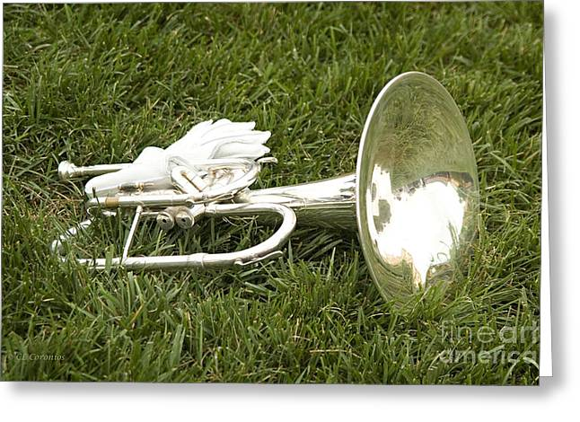 Greeting Card featuring the photograph Brass In Grass by Carol Lynn Coronios