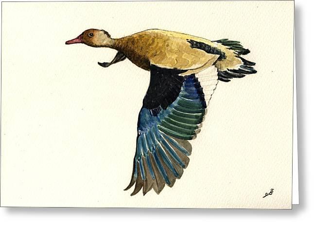 Brazilian Teal Or Brazilian Duck Amazonetta Brasiliensis Greeting Card by Juan  Bosco