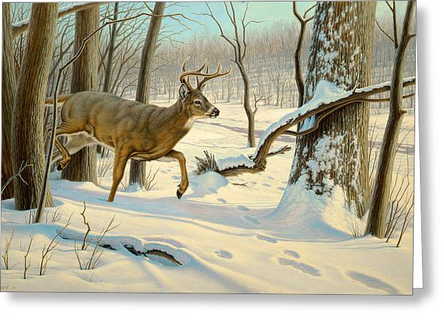 Breaking Cover-whitetail Greeting Card