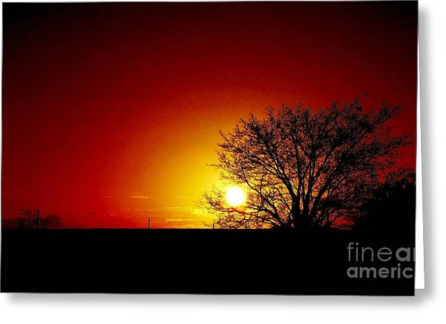 Breaking Dawn Greeting Card by Amar Sheow