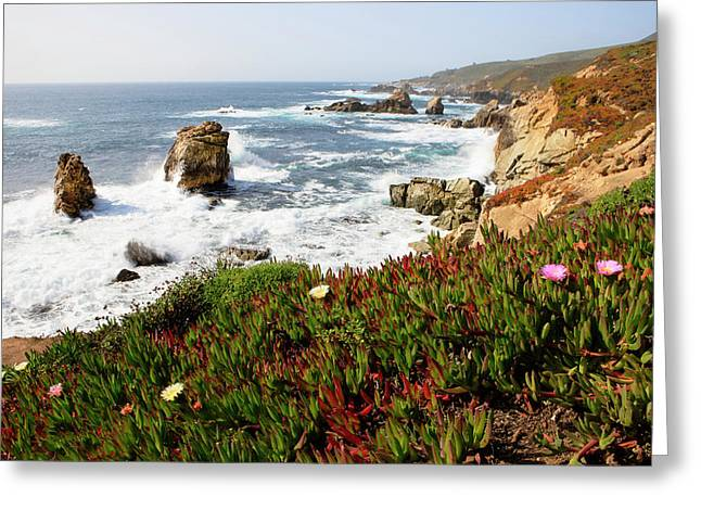 Breaking Waves And Flowers Greeting Card by Tom Norring