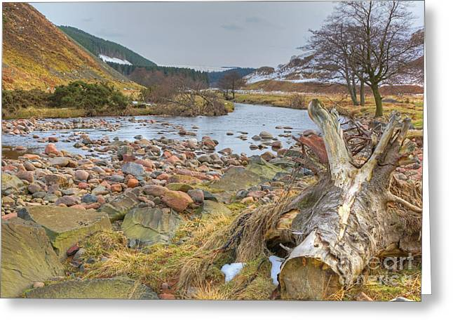 Breamish Valley Landscape Greeting Card by David Birchall