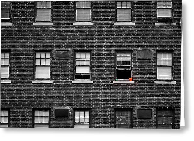 Brick Wall And Windows Greeting Card