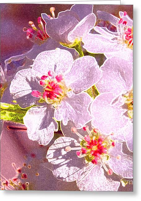 Bridal Bouquet By Jrr Greeting Card by First Star Art