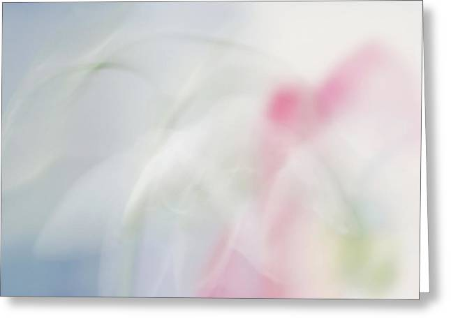 Greeting Card featuring the photograph Bridal Veil by Annie Snel