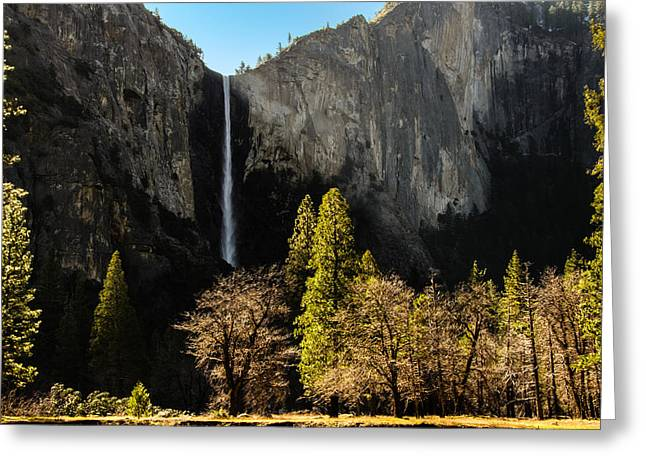 Bridalveil Fall Greeting Card by Celso Diniz