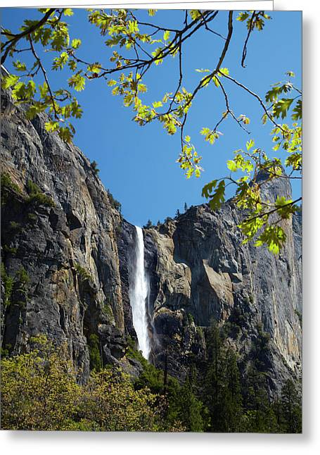 Bridalveil Fall, Yosemite Valley Greeting Card