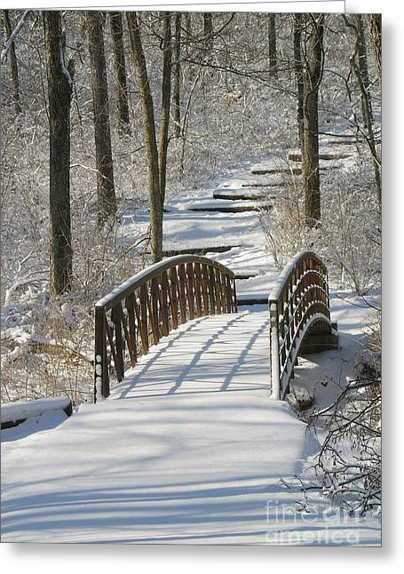 Bridge 0004 Greeting Card by Gary Gingrich Galleries