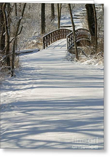 Bridge 9896 Greeting Card by Gary Gingrich Galleries