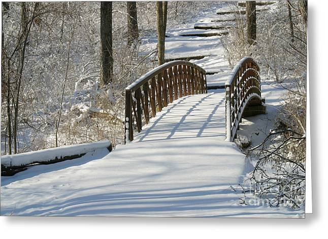 Bridge 9900 Greeting Card by Gary Gingrich Galleries