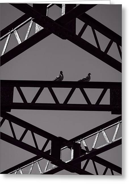 Bridge Abstract Greeting Card by Bob Orsillo