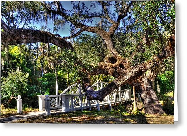 Bridge At Koreshan State Park - Estero Florida Greeting Card by Timothy Lowry
