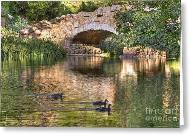 Greeting Card featuring the photograph Bridge At Stow Lake by Kate Brown