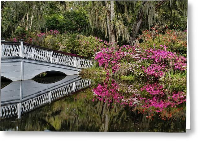 Bridge Crossing Pond Springtime Azalea Greeting Card