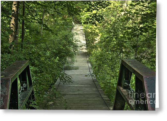 Bridge Into The Woods Greeting Card