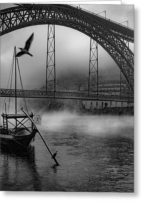 Bridge Over Douro Greeting Card by Fernando Jorge Gon?alves