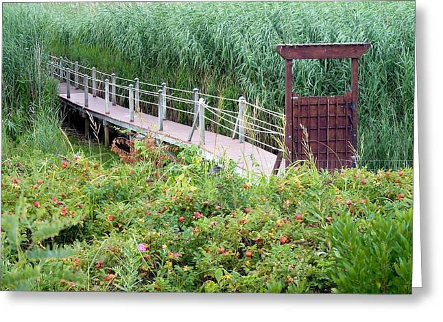 Greeting Card featuring the photograph Bridge Over Eel River by Janice Drew