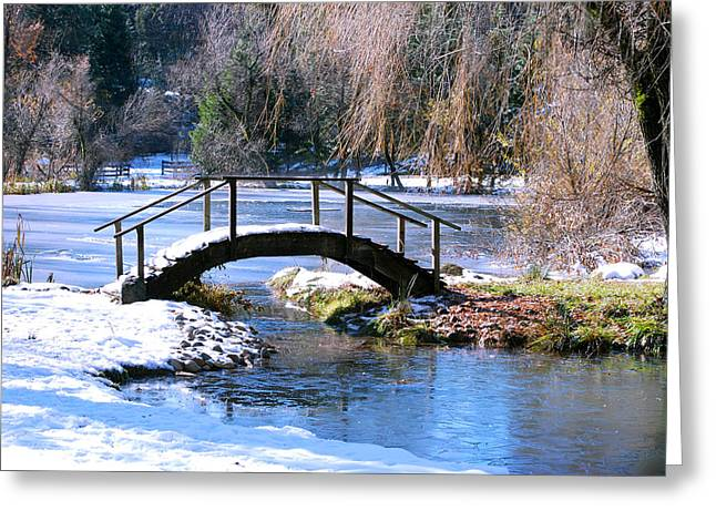 Greeting Card featuring the photograph Bridge Over Ice N Snow by William Havle