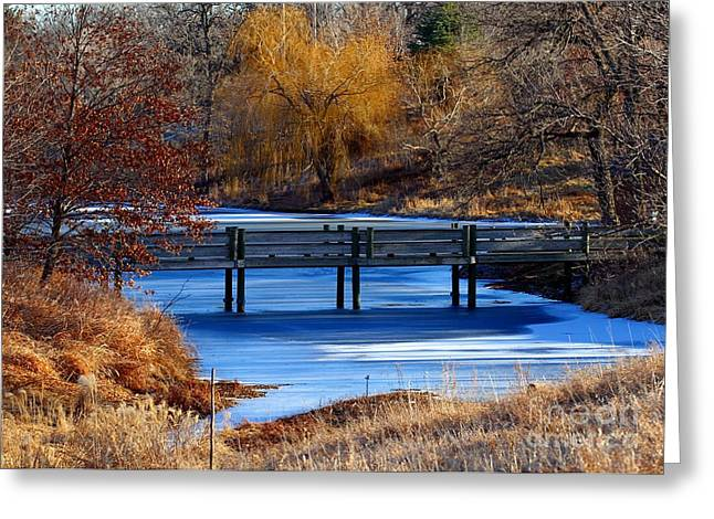 Greeting Card featuring the photograph Bridge Over Icy Waters by Elizabeth Winter