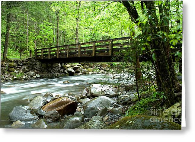 Bridge Over The Little Pigeon River Greeting Card