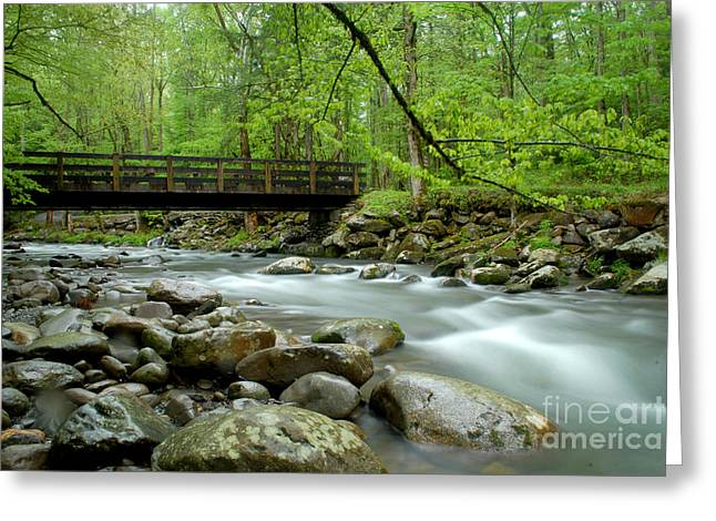 Bridge Over The Pigeon River Greeting Card