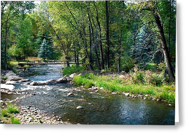 Bridge Over The Roaring Fork River In Colorado Greeting Card by Julie Magers Soulen
