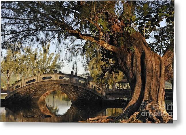 Bridge Over Water At Japanese Garden Greeting Card