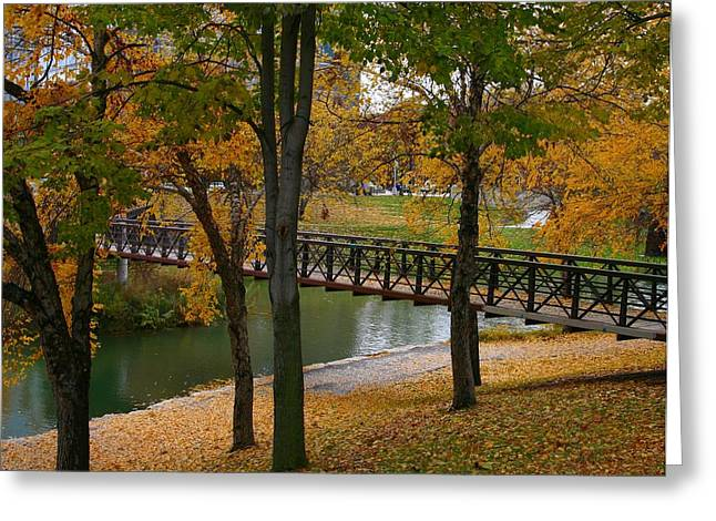 Greeting Card featuring the photograph Bridge To Fall by Elizabeth Winter