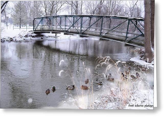 Bridge To Success Greeting Card by Frank Sciberras