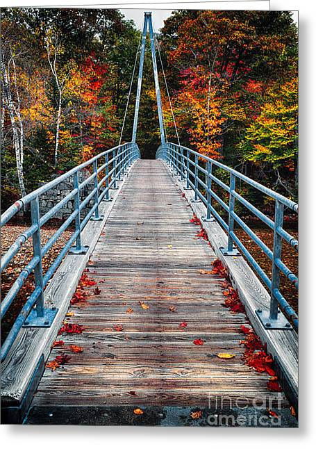 Bridge To The Nature Greeting Card