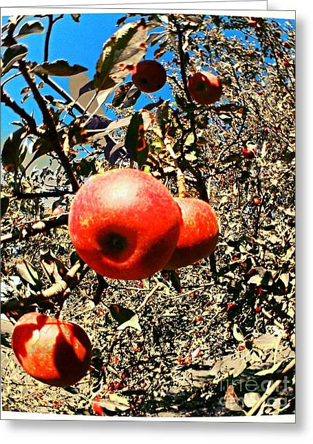 Bright Apples Greeting Card by Garren Zanker