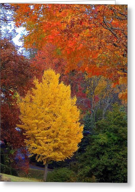Bright Autumn Greeting Card